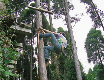 I never learned how to climb anything vertical